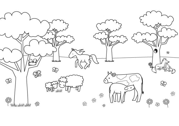 Ausmalbild Tiere Tiere Auf Der Weide Zum Ausmalen Kostenlos