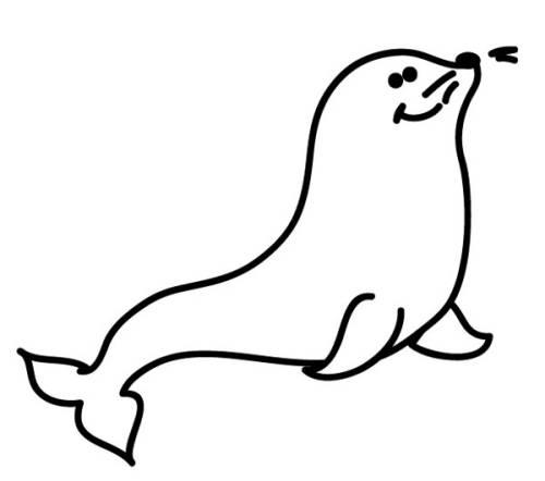 Kostenlose Malvorlage Tiere Robbe Zum Ausmalen Zum Ausmalen
