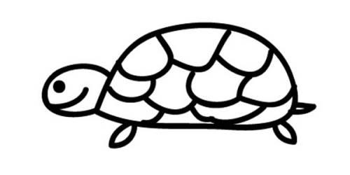 Kostenlose Malvorlage Tiere: Schildkröte zum Ausmalen zum Ausmalen
