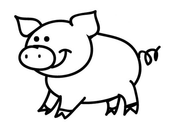 Schwein Zum Ausmalen