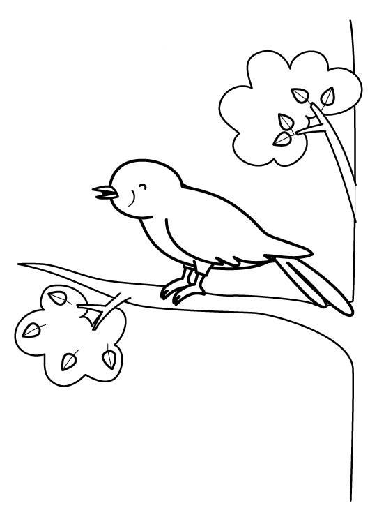 ausmalbild tiere singvogel zum ausmalen kostenlos ausdrucken. Black Bedroom Furniture Sets. Home Design Ideas