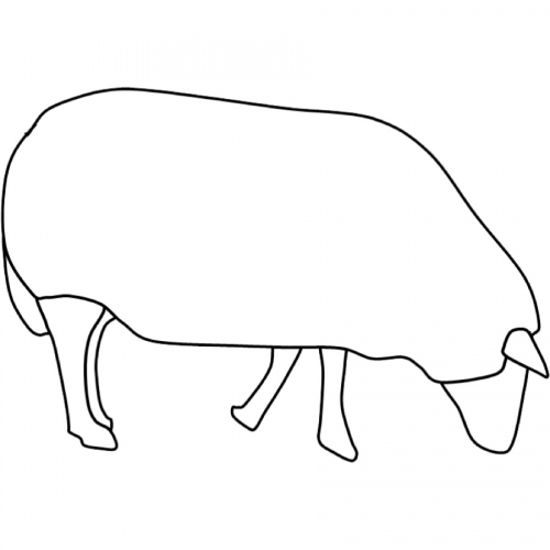 Kostenlose Malvorlage Tiere Ausmalbild Schaf Zum Ausmalen