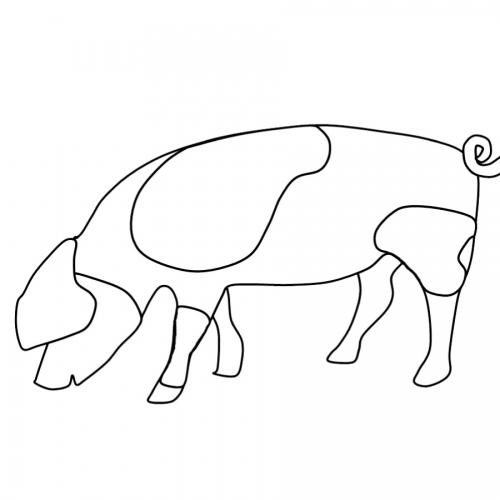 Kostenlose Malvorlage Tiere Ausmalbild Schwein Zum Ausmalen