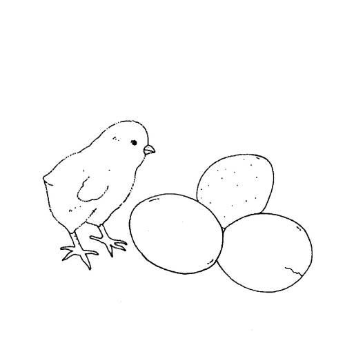 Kostenlose Malvorlage Bauernhof: Küken und Eier zum Ausmalen