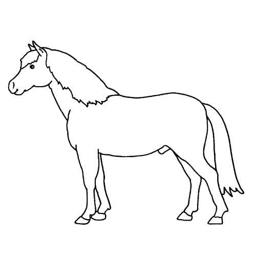 Kostenlose Malvorlage Bauernhof: Ausmalbild Pferd zum Ausmalen