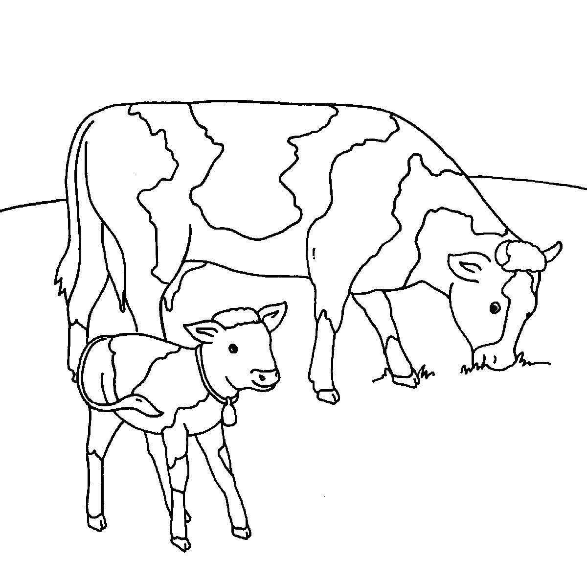 Ausmalbild Bauernhof Kühe Auf Der Weide Kostenlos Ausdrucken