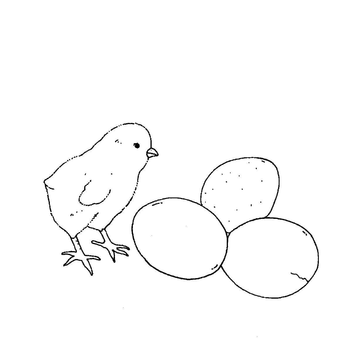 Ausmalbild Bauernhof: Küken und Eier kostenlos ausdrucken