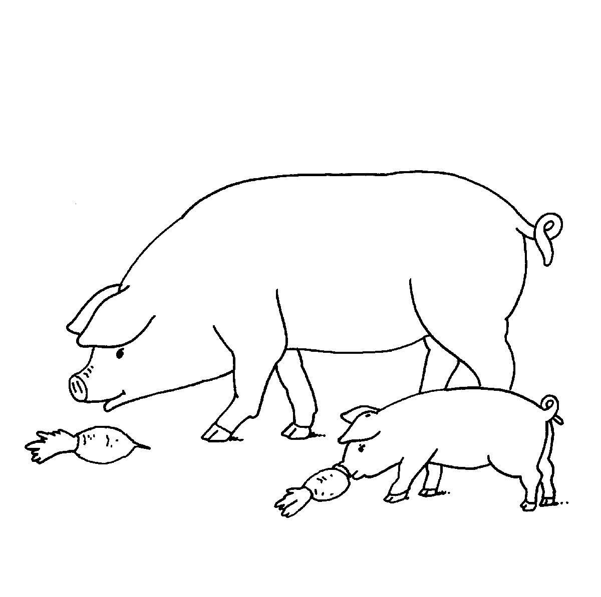 Ausmalbild Bauernhof: Schweine auf dem Bauernhof kostenlos ausdrucken