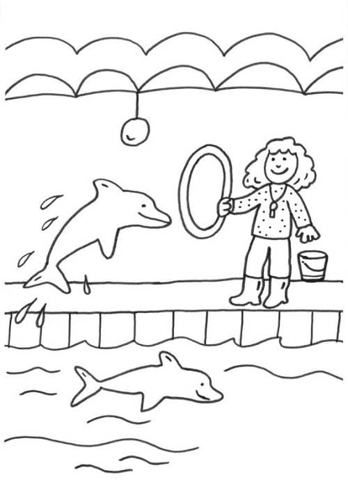 Kostenlose Malvorlage Fische Delfine Und Wale Delfine In Einer Show Zum Ausmalen