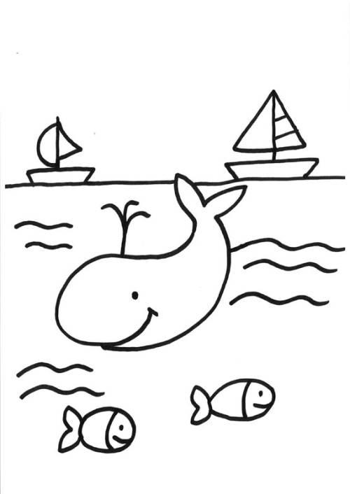 Kostenlose Malvorlage Delfine Und Wale Wal Fische Und Segelboote
