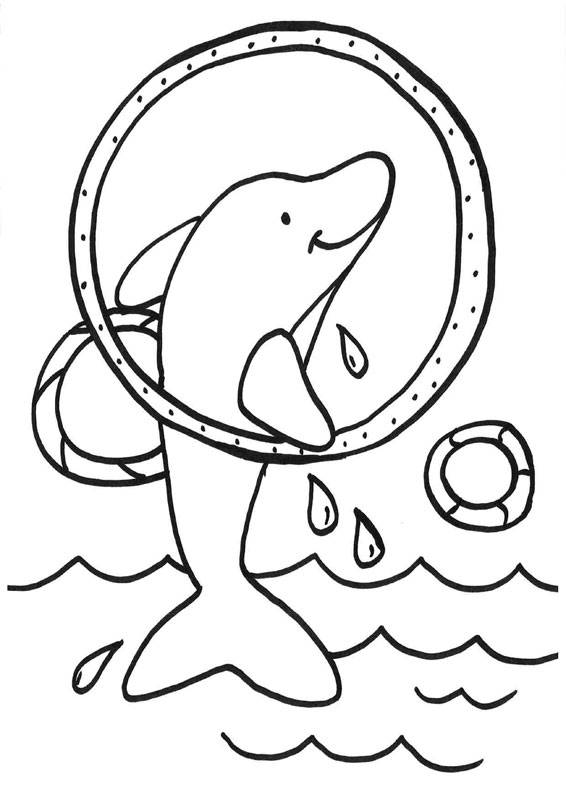 Ausmalbild Delfine Und Wale Delfin Springt Durch Einen Ring