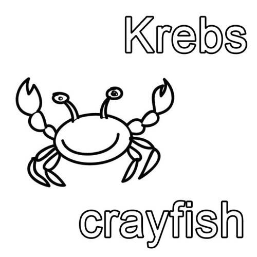 Kostenlose Malvorlage Englisch Lernen Krebs Crayfish Zum Ausmalen
