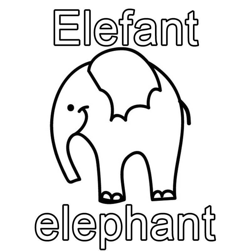 Ausmalbild Englisch Lernen Elefant Elephant Kostenlos