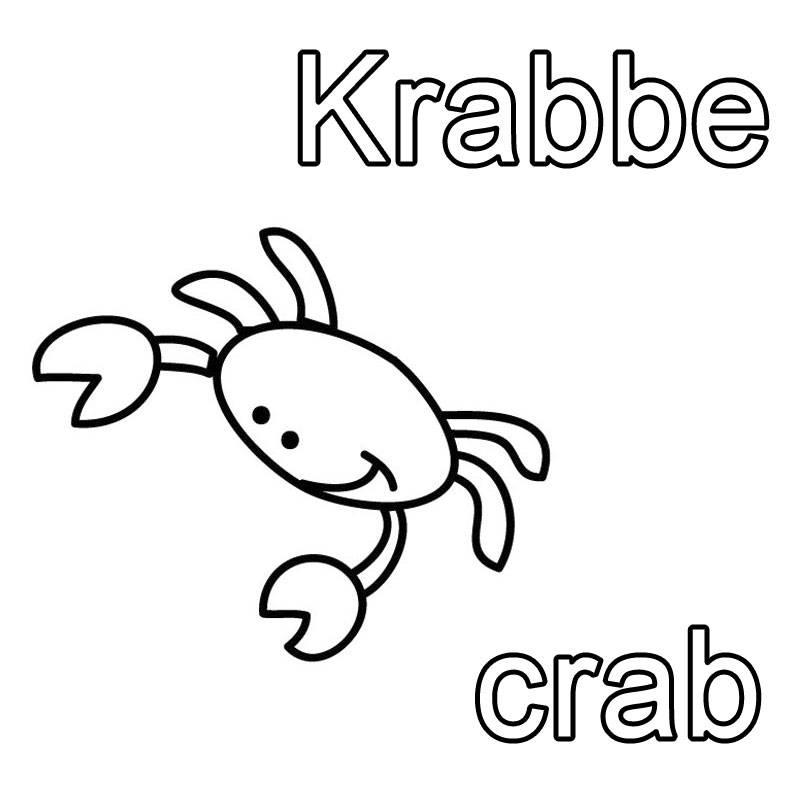 Schön Anatomie Der Krabbe Fotos - Menschliche Anatomie Bilder ...