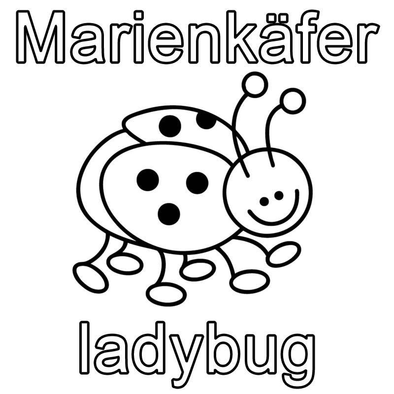 Ausmalbild Englisch lernen: Marienkäfer - ladybug kostenlos ausdrucken