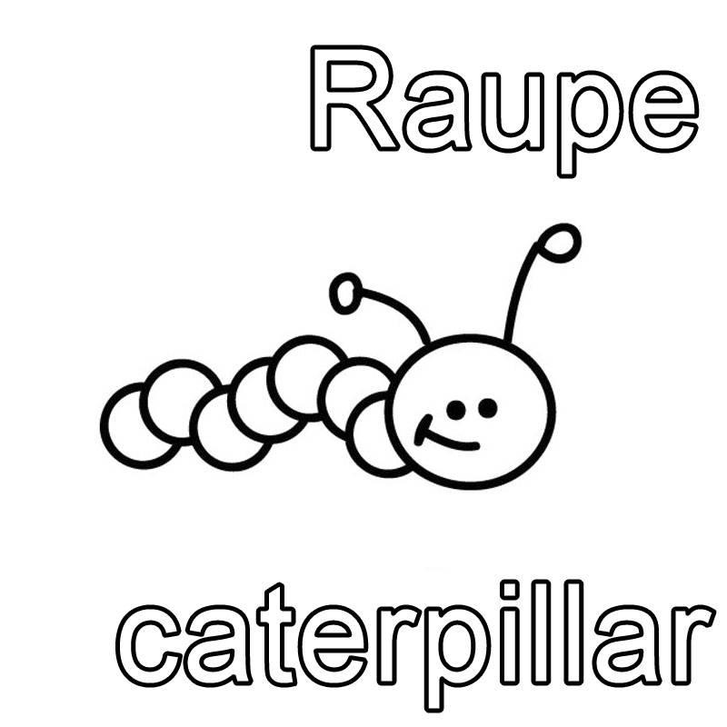 kostenlose malvorlage englisch lernen raupe  caterpillar