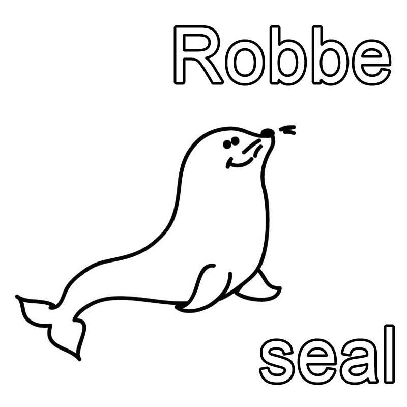 ausmalbild englisch lernen robbe   seal kostenlos ausdrucken