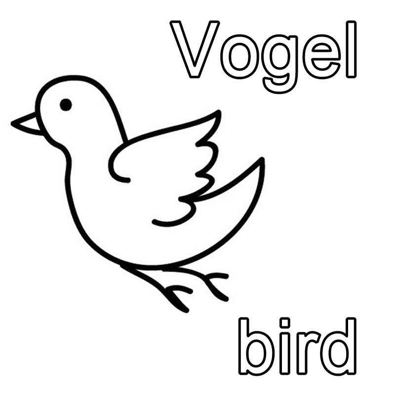 ausmalbild englisch lernen vogel  bird kostenlos ausdrucken