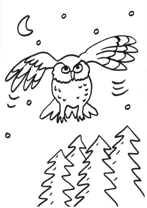 Kostenlose Malvorlage Eulen: Fliegende Eule zum Ausmalen