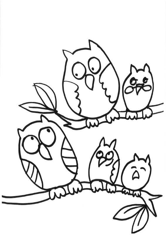ausmalbilder eule kostenlos ausdrucken  kinder zeichnen