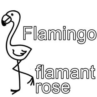 kostenlose malvorlage franz sisch lernen ausmalbild franz sisch lernen flamingo flamant rose. Black Bedroom Furniture Sets. Home Design Ideas
