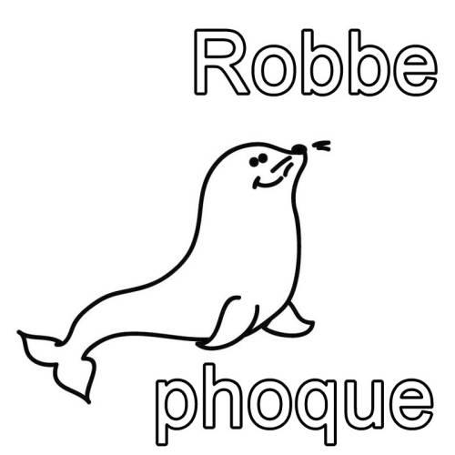 kostenlose malvorlage französisch lernen robbe  phoque