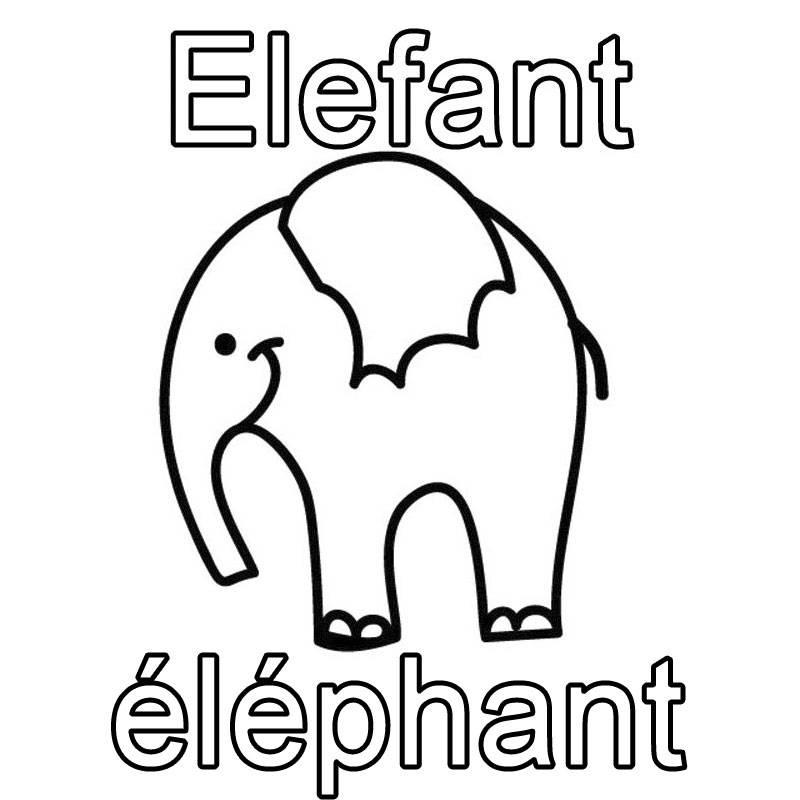 ausmalbild französisch lernen elefant  éléphant