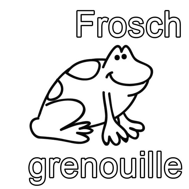 Ausmalbild Französisch Lernen Frosch Grenouille Kostenlos