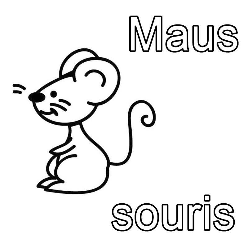 kostenlose malvorlage französisch lernen maus  souris