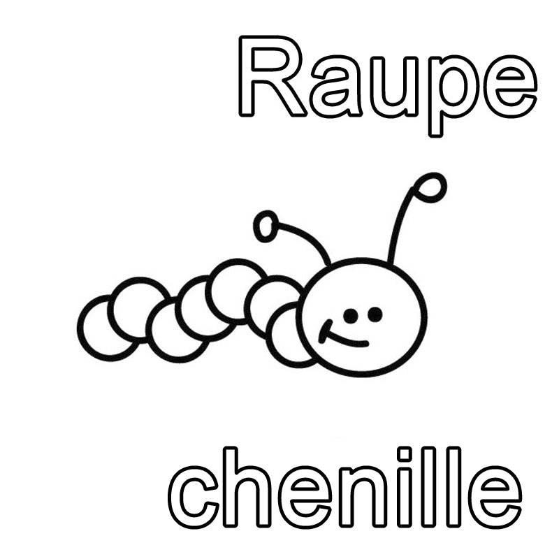 ausmalbild französisch lernen raupe  chenille kostenlos