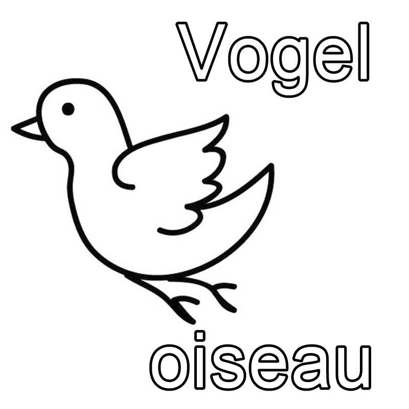kostenlose malvorlage französisch lernen: vogel - oiseau