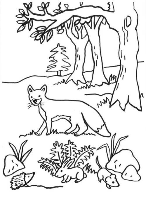 kostenlose malvorlage füchse fuchs igel hase und maus