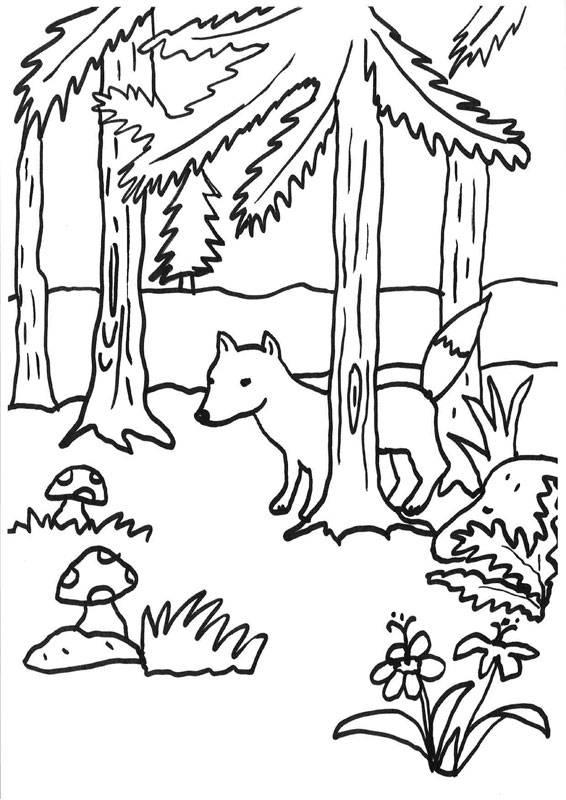ausmalbild füchse fuchs im wald kostenlos ausdrucken