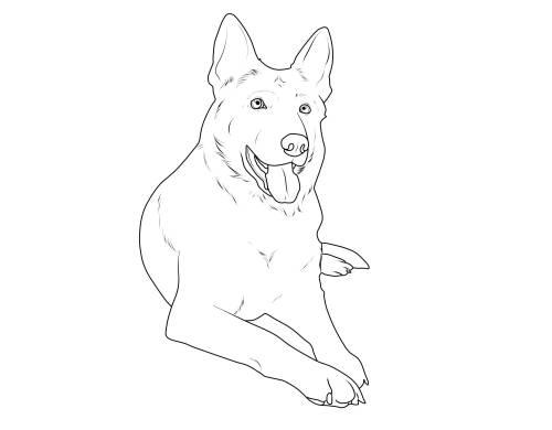Kostenlose Malvorlage Hunde: Deutscher Schäferhund zum Ausmalen