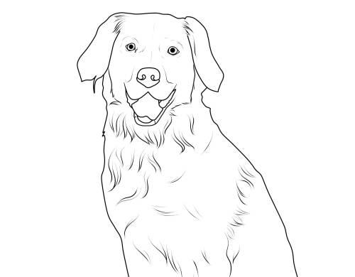Kostenlose Malvorlage Hunde: Labrador zum Ausmalen