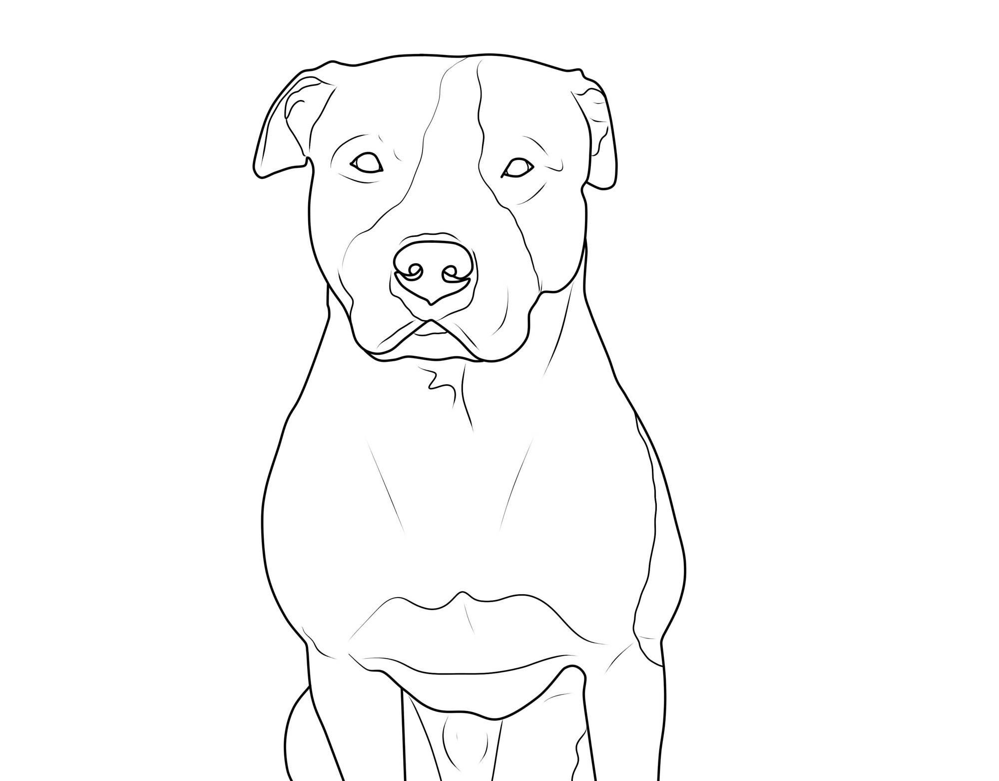 kostenlose malvorlage hunde american pit bull terrier zum