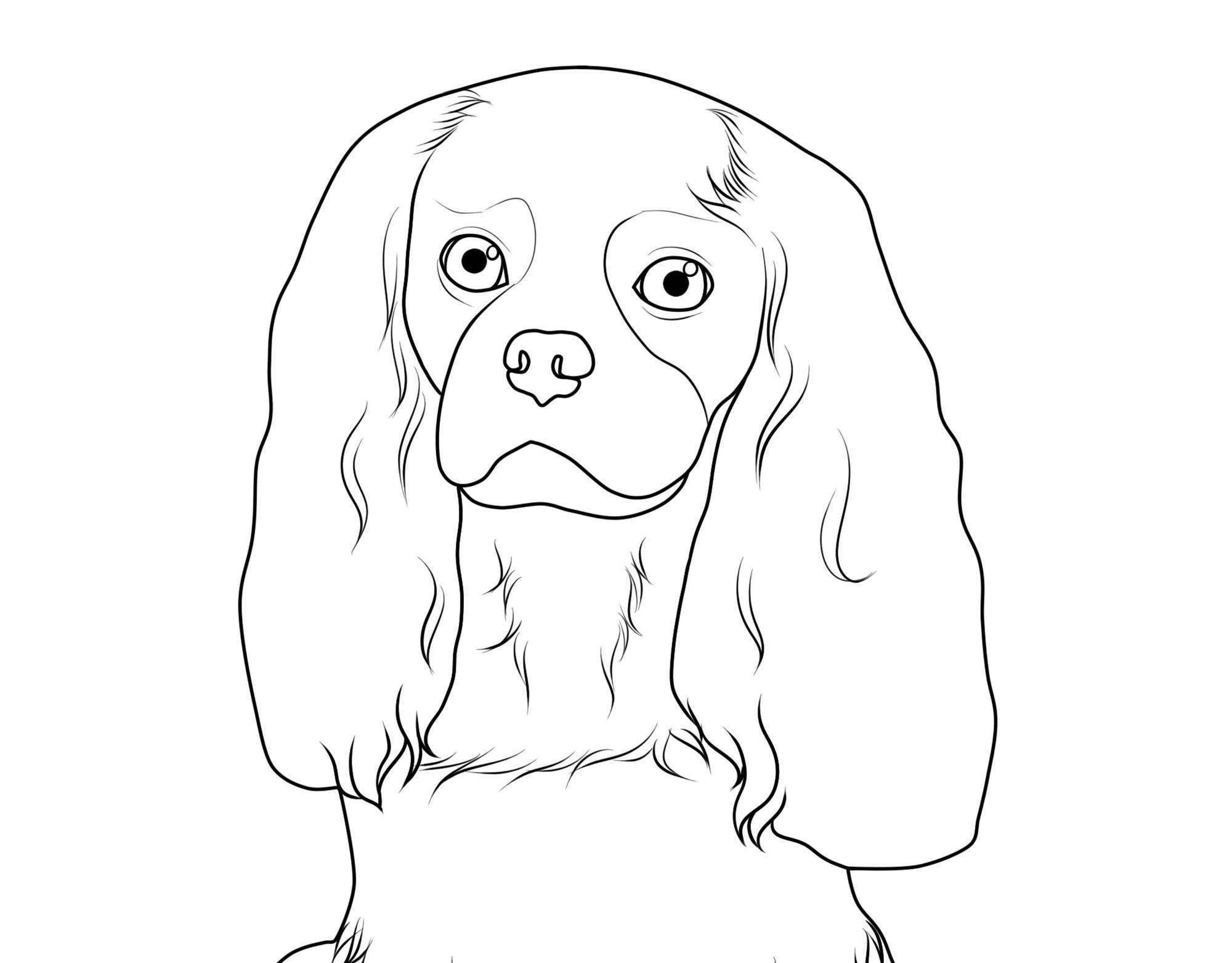 Nett Malvorlagen Kostenlos Hunde Galerie Entry Level Resume