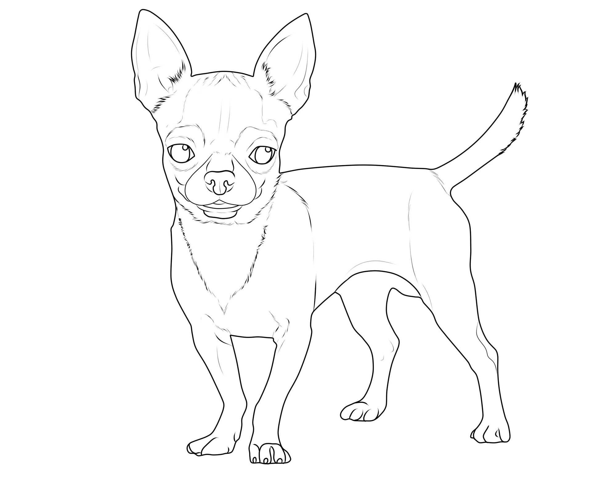 ausmalbilder zum drucken hunde  zeichnen und färben