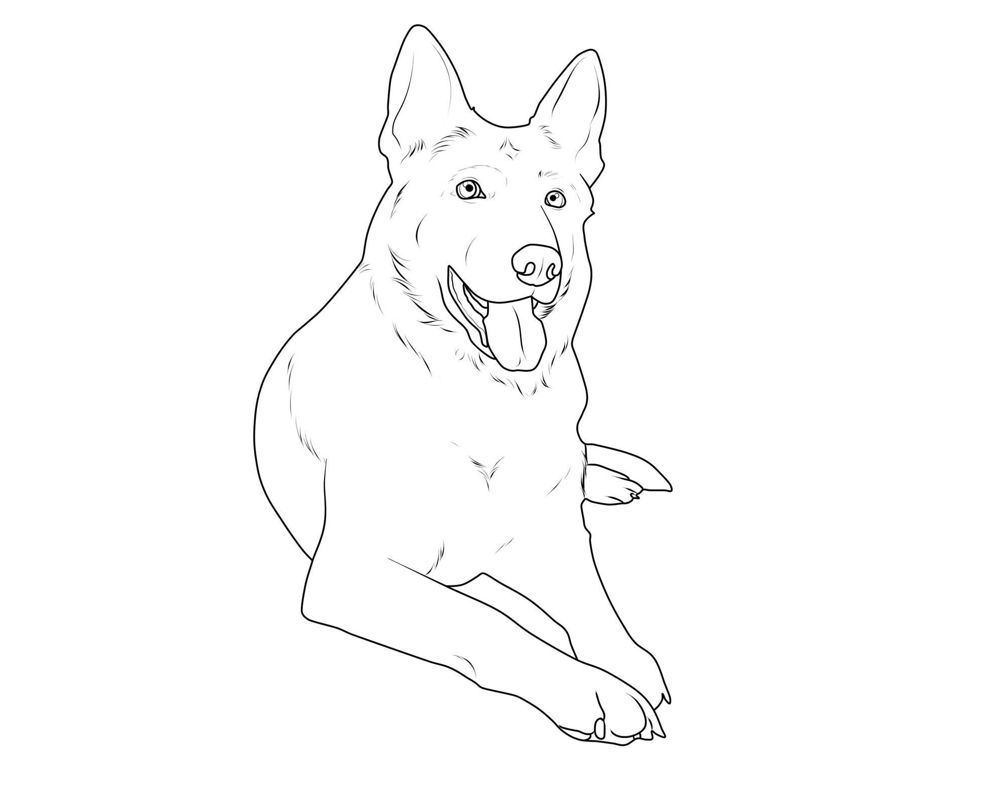 Atemberaubend Malvorlagen Von Hunden Ausdrucken Fotos - Druckbare ...