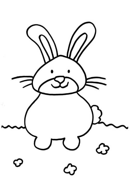 Kostenlose Malvorlage Kaninchen Dickes Kaninchen Zum Ausmalen
