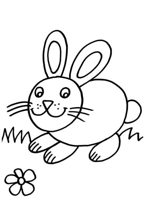 kostenlose malvorlage kaninchen kaninchen und blume zum