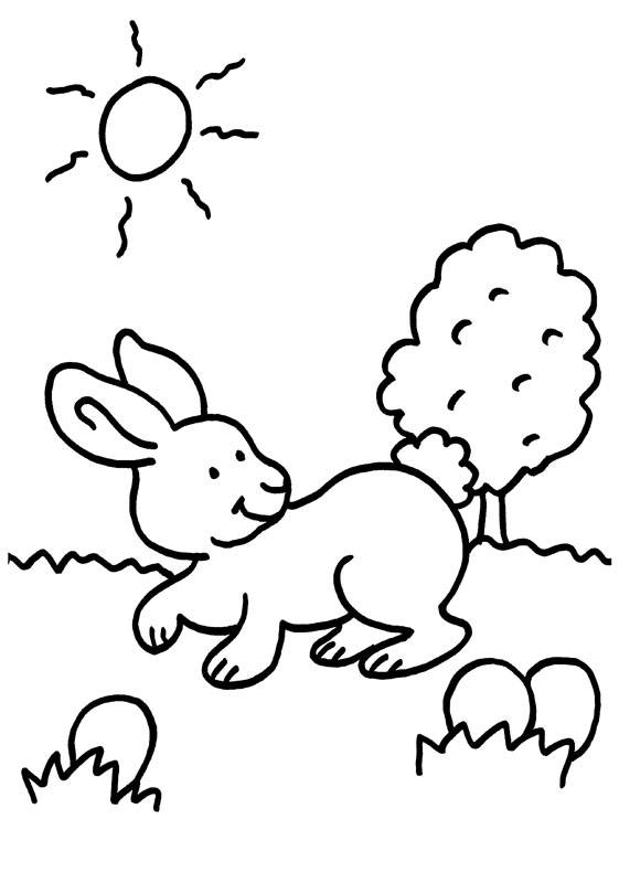 Ausmalbild Kaninchen Kaninchen Auf Der Wiese Kostenlos