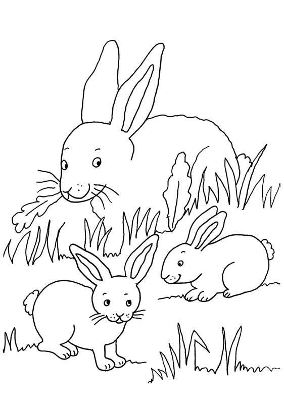 Kostenlose Malvorlage Kaninchen: Kaninchenfamilie zum Ausmalen