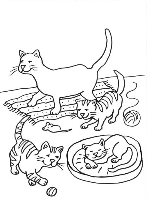 Cats And Dogs Pictures To Colour In