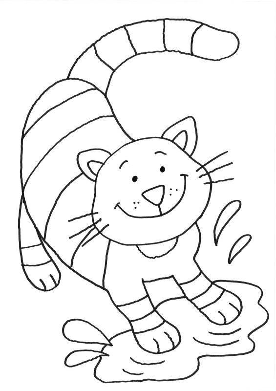 ausmalbild katzen katze in der pfütze kostenlos ausdrucken