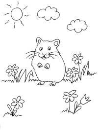kostenlose ausmalbilder und malvorlagen: meerschweinchen zum ausmalen und ausdrucken