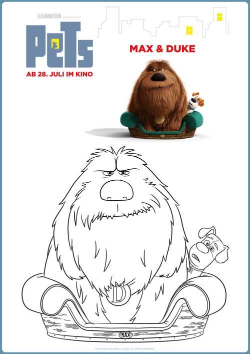 Kostenlose Malvorlage Pets Ausmalbild Pets Max Duke Zum Ausmalen