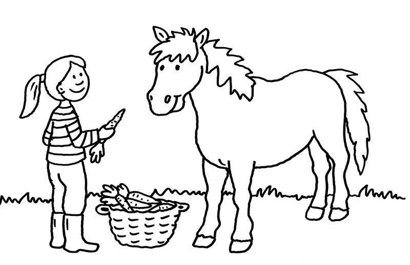 Ausmalbild Pferde Mädchen Füttert Pferd Mit Karotten Kostenlos