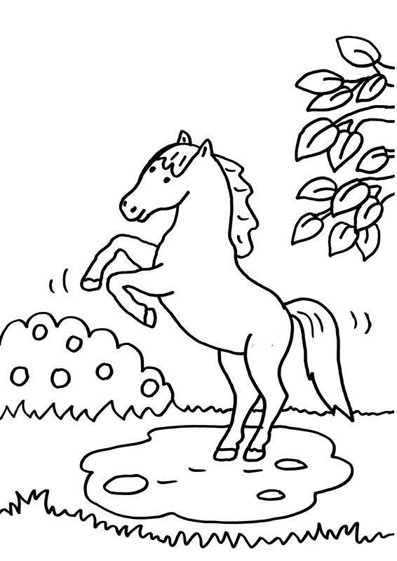 kostenlose malvorlage pferde: pferd bäumt sich auf zum