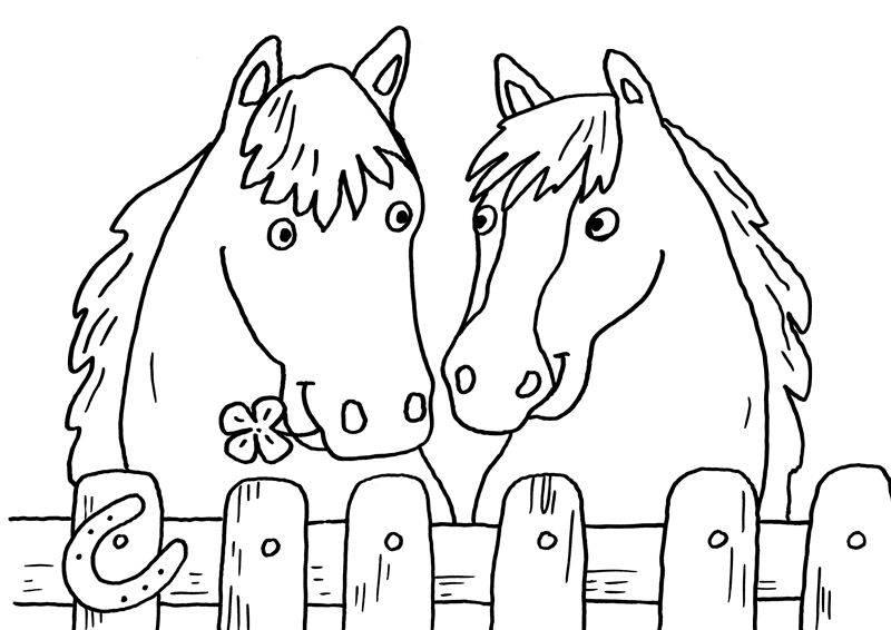 Ausmalbild Pferde Zwei Pferde Zum Ausmalen Kostenlos Ausdrucken